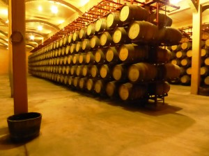Barrel room with metal structure